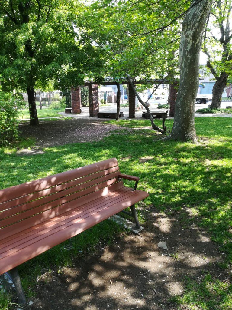 公園をnova liteで撮影。