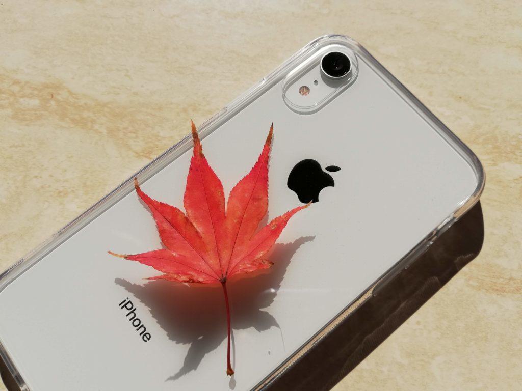紅葉とiPhone XRのツーショット。自然にもよく合う。