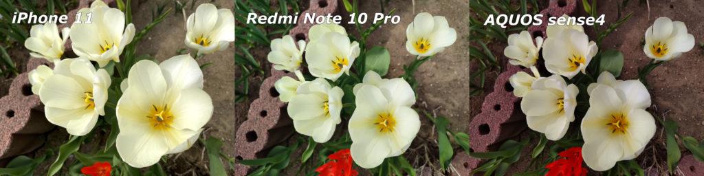 iPhone 11とRedmi Note 10 ProとAQUOS sene4のカメラを比較