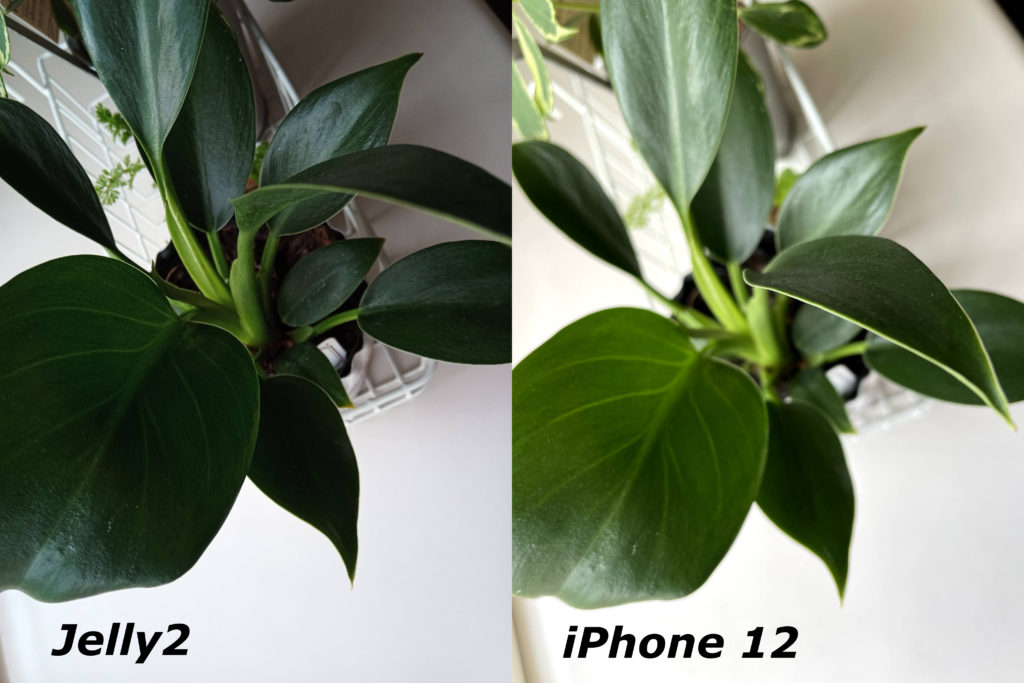 Jelly2とiPhone 12のカメラを比較